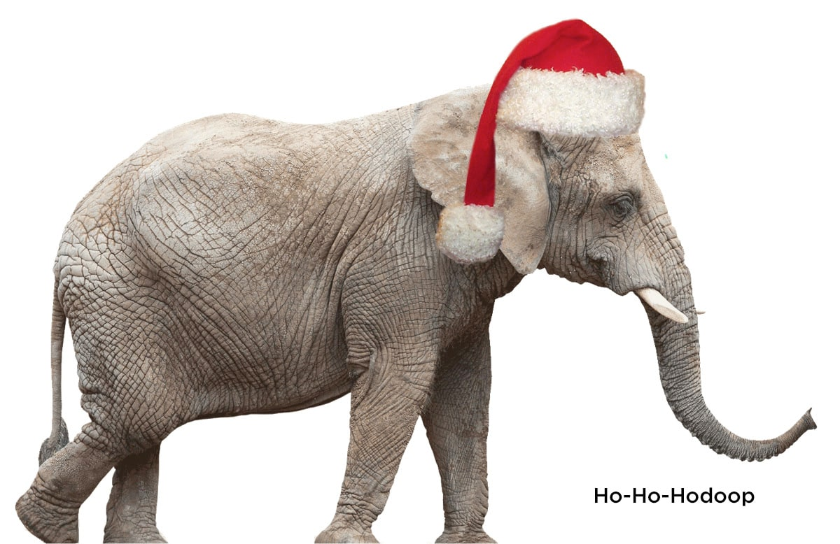 ChristmasElephant2