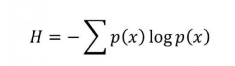 shannon_equation