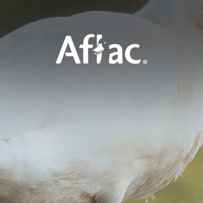 Aflac 社